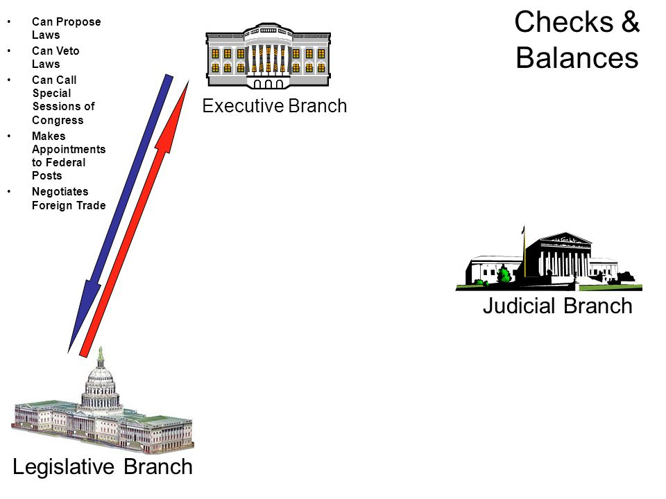 Executive Branch Judicial Branch Legislative Branch Can Propose Laws Can Veto Laws Can Call Special Sessions of Congress Makes Appointments to Federal Posts Negotiates Foreign Trade Checks & Balances