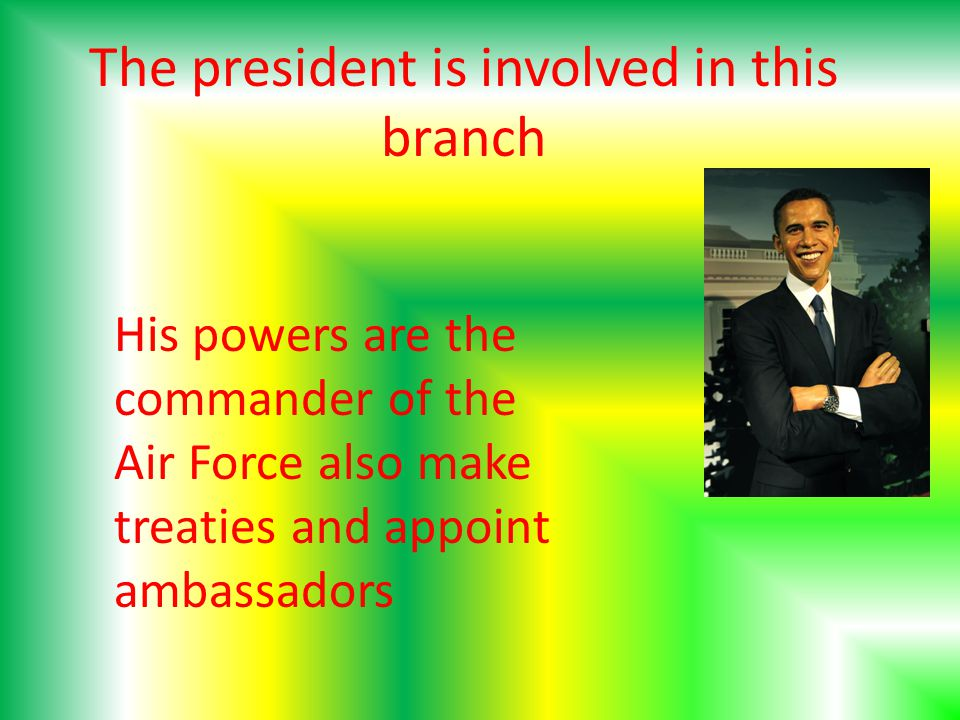 The president is involved in this branch His powers are the commander of the Air Force also make treaties and appoint ambassadors