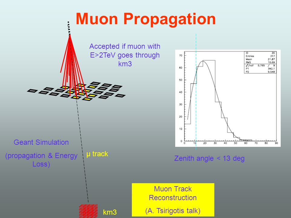 Muon Propagation μ track km3 Geant Simulation (propagation & Energy Loss) Accepted if muon with E>2TeV goes through km3 Muon Track Reconstruction (A.