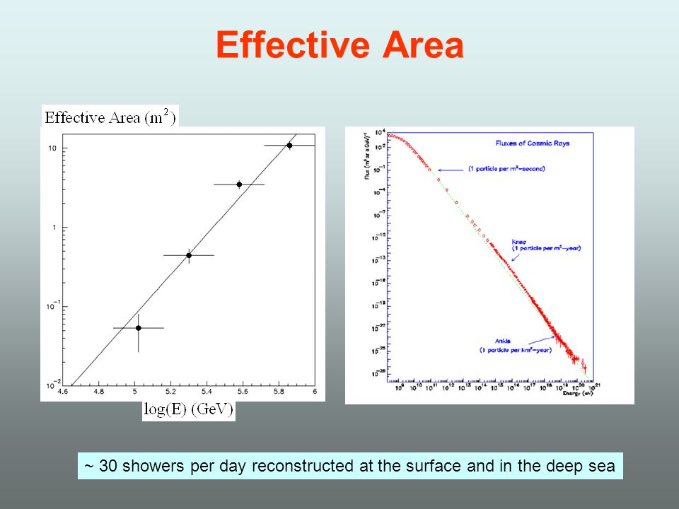Effective Area ~ 30 showers per day reconstructed at the surface and in the deep sea