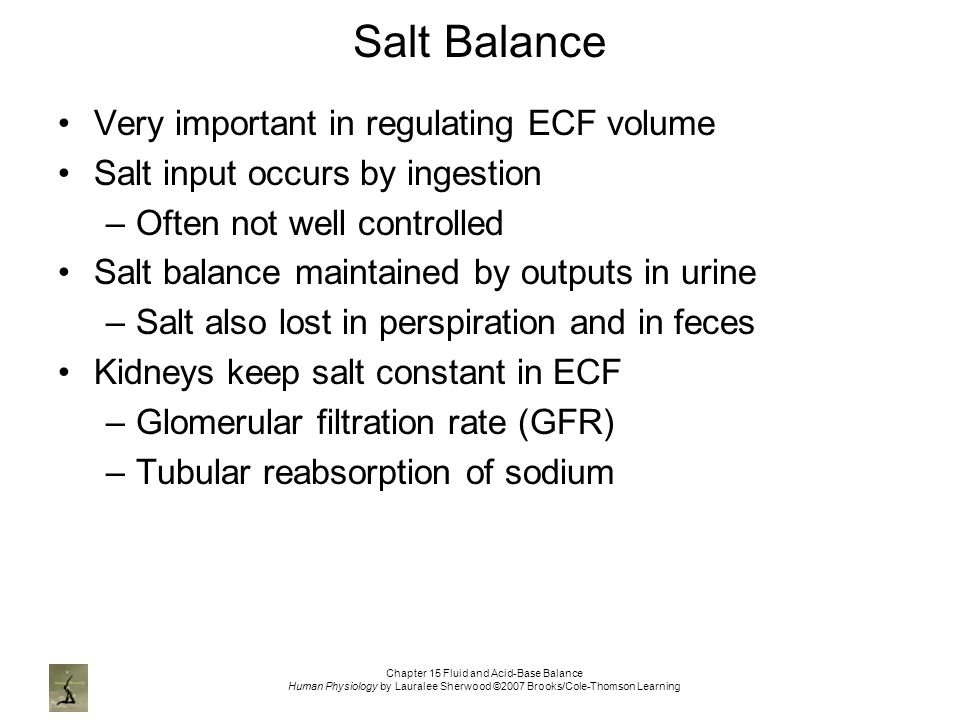 Chapter 15 Fluid and Acid-Base Balance Human Physiology by Lauralee Sherwood ©2007 Brooks/Cole-Thomson Learning Salt Balance Very important in regulating ECF volume Salt input occurs by ingestion –Often not well controlled Salt balance maintained by outputs in urine –Salt also lost in perspiration and in feces Kidneys keep salt constant in ECF –Glomerular filtration rate (GFR) –Tubular reabsorption of sodium