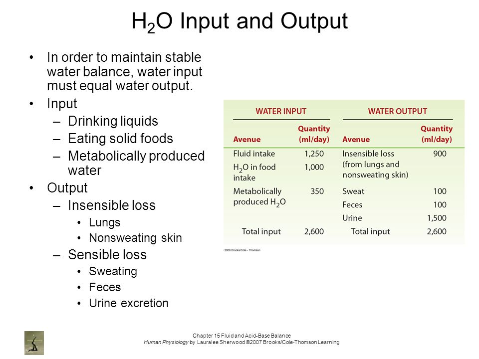 Chapter 15 Fluid and Acid-Base Balance Human Physiology by Lauralee Sherwood ©2007 Brooks/Cole-Thomson Learning H 2 O Input and Output In order to maintain stable water balance, water input must equal water output.