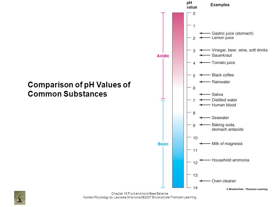 Chapter 15 Fluid and Acid-Base Balance Human Physiology by Lauralee Sherwood ©2007 Brooks/Cole-Thomson Learning Comparison of pH Values of Common Substances