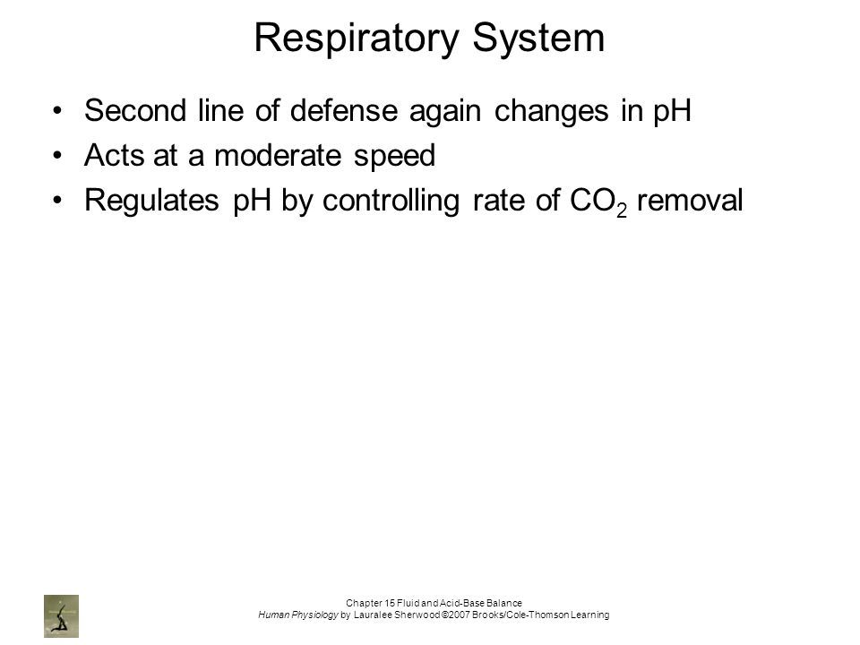 Chapter 15 Fluid and Acid-Base Balance Human Physiology by Lauralee Sherwood ©2007 Brooks/Cole-Thomson Learning Respiratory System Second line of defense again changes in pH Acts at a moderate speed Regulates pH by controlling rate of CO 2 removal