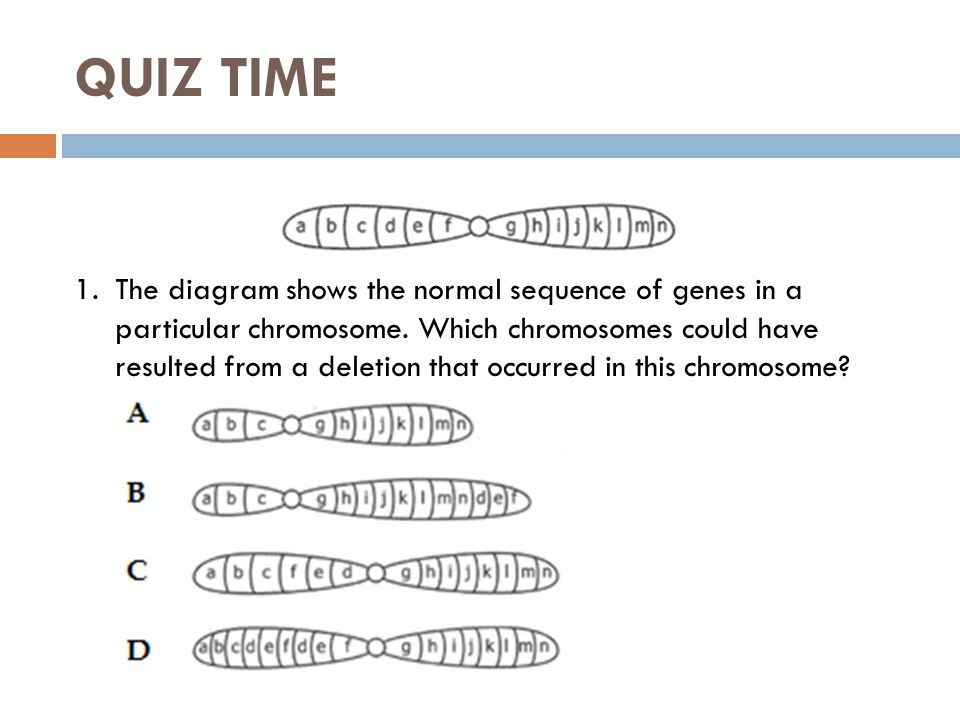 Gene and Chromosome Mutation Worksheet Answer Key ly Gene also Chromosomal Mutations Worksheet Education Pinterest Worksheets additionally Worksheet 19 Gene And Chromosomal Mutations Answers   a bio chapter besides Gene   Chromosomal Mutations Worksheet further  furthermore Unit 8 Molecular Ge ics and Biotechnology Main Idea DNA codes for likewise  also  moreover  as well Mutation Worksheet likewise Gene Mutations Worksheet Gallery Free Printable Worksheets For as well Gene and Chromosome Mutation Worksheet Answer Key Also Lesson also 3 Gene Chromosome Mutation Worksheet  Gene Chromosome Mutation additionally Chromosomal Mutations Worksheet   Briefencounters Worksheet Template in addition  besides . on gene and chromosome mutation worksheet