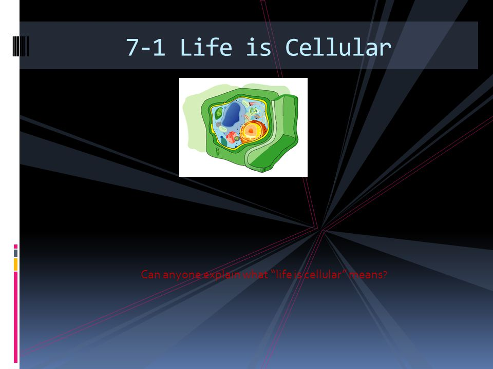 3 Can Anyone Explain What Life Is Cellular Means 71: 7 1 Life Is Cellular Worksheet Answers At Alzheimers-prions.com