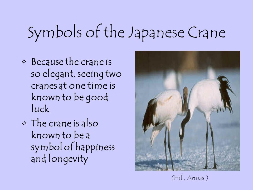 Japanese Crane English 1 Louise S Mcgehee School 2004 If You Do