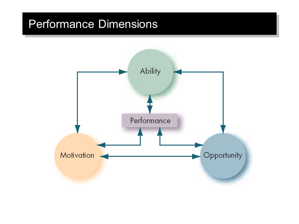 Performance Dimensions