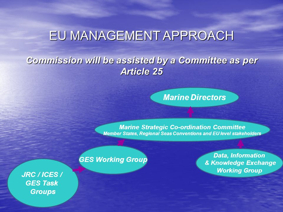 EU MANAGEMENT APPROACH Commission will be assisted by a Committee as per Article 25 Marine Directors Marine Strategic Co-ordination Committee Member States, Regional Seas Conventions and EU level stakeholders GES Working Group Data, Information & Knowledge Exchange Working Group JRC / ICES / GES Task Groups