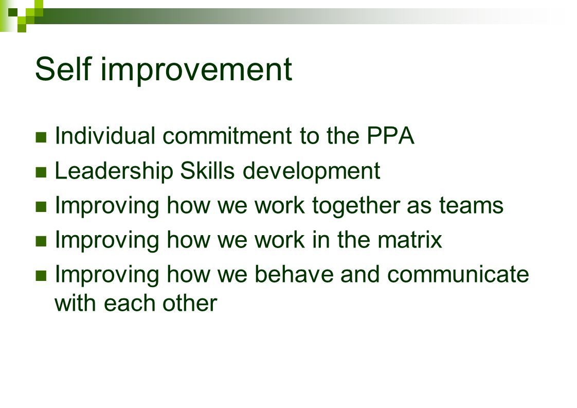 Self improvement Individual commitment to the PPA Leadership Skills development Improving how we work together as teams Improving how we work in the matrix Improving how we behave and communicate with each other