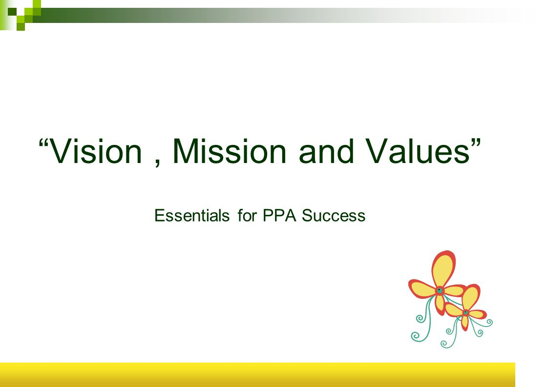 Vision, Mission and Values Essentials for PPA Success