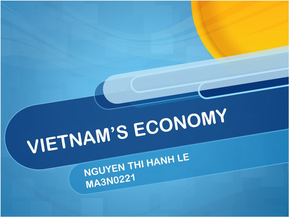 NGUYEN THI HANH LE MA3N0221 VIETNAM'S ECONOMY