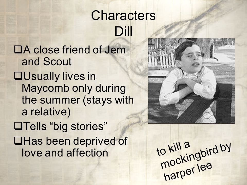 to kill a mockingbird outline similarities between harper lee and scout In addition to the parallels already drawn between the characters and setting of to kill a mockingbird and the real life of harper lee, there are a few other similarities that can be mentioned.