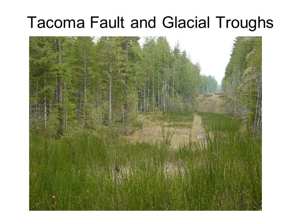 Tacoma Fault and Glacial Troughs