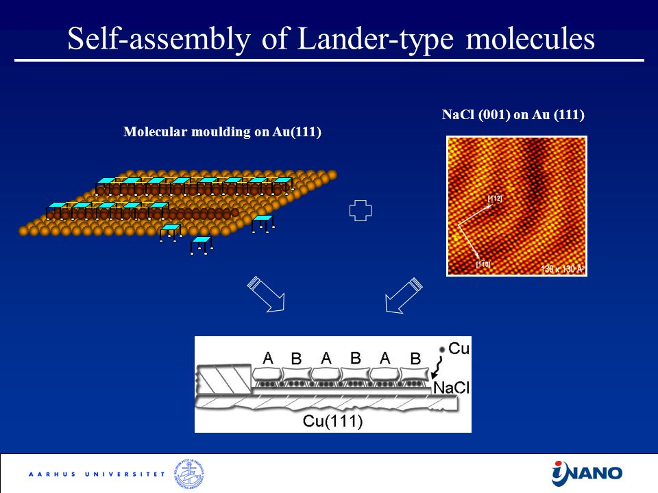 Self-assembly of Lander-type molecules Molecular moulding on Au(111) NaCl (001) on Au (111)