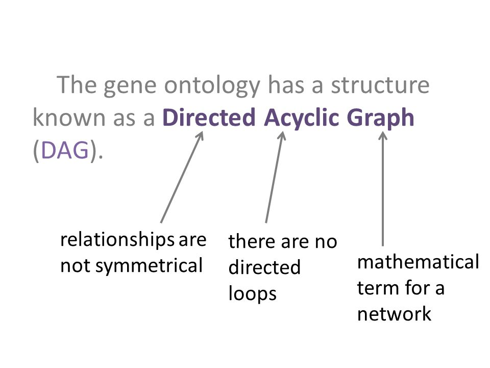 The gene ontology has a structure known as a Directed Acyclic Graph (DAG).