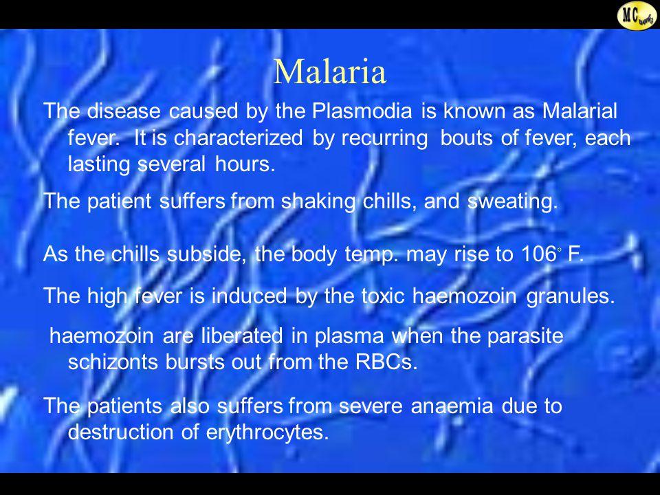 plasmodium malaria life cycle a power presentation from