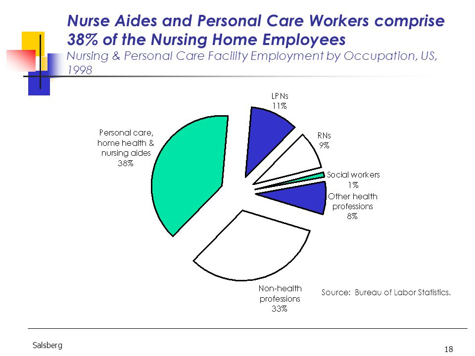 18 Salsberg Nurse Aides and Personal Care Workers comprise 38% of the Nursing Home Employees Nursing & Personal Care Facility Employment by Occupation, US, 1998 Source: Bureau of Labor Statistics.