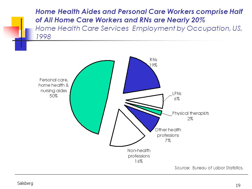 19 Salsberg Home Health Aides and Personal Care Workers comprise Half of All Home Care Workers and RNs are Nearly 20% Home Health Care Services Employment by Occupation, US, 1998 Source: Bureau of Labor Statistics.