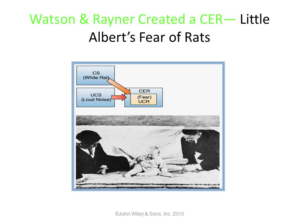 Watson & Rayner Created a CER— Little Albert's Fear of Rats ©John Wiley & Sons, Inc. 2010