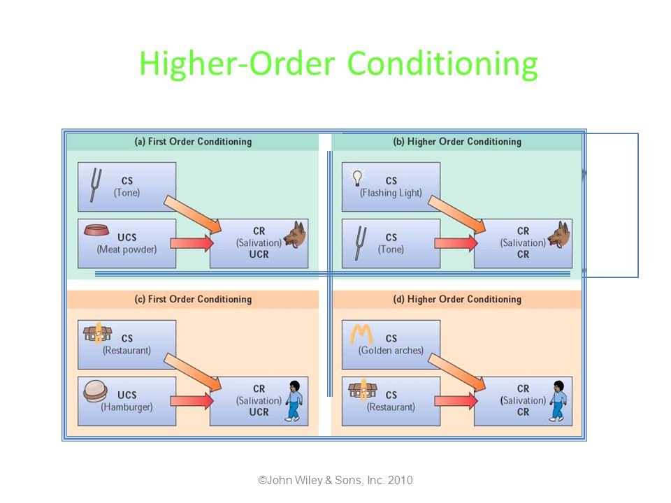 Higher-Order Conditioning ©John Wiley & Sons, Inc. 2010