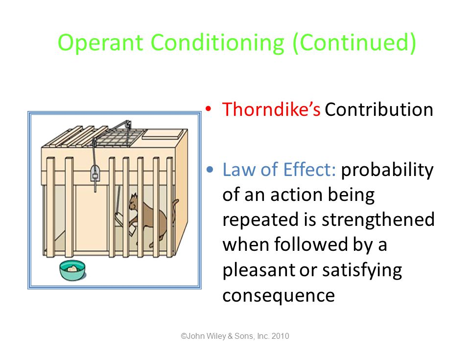 Operant Conditioning (Continued) Thorndike's Contribution Law of Effect: probability of an action being repeated is strengthened when followed by a pleasant or satisfying consequence ©John Wiley & Sons, Inc.