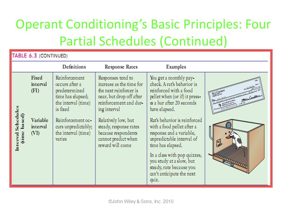 Operant Conditioning's Basic Principles: Four Partial Schedules (Continued) ©John Wiley & Sons, Inc.