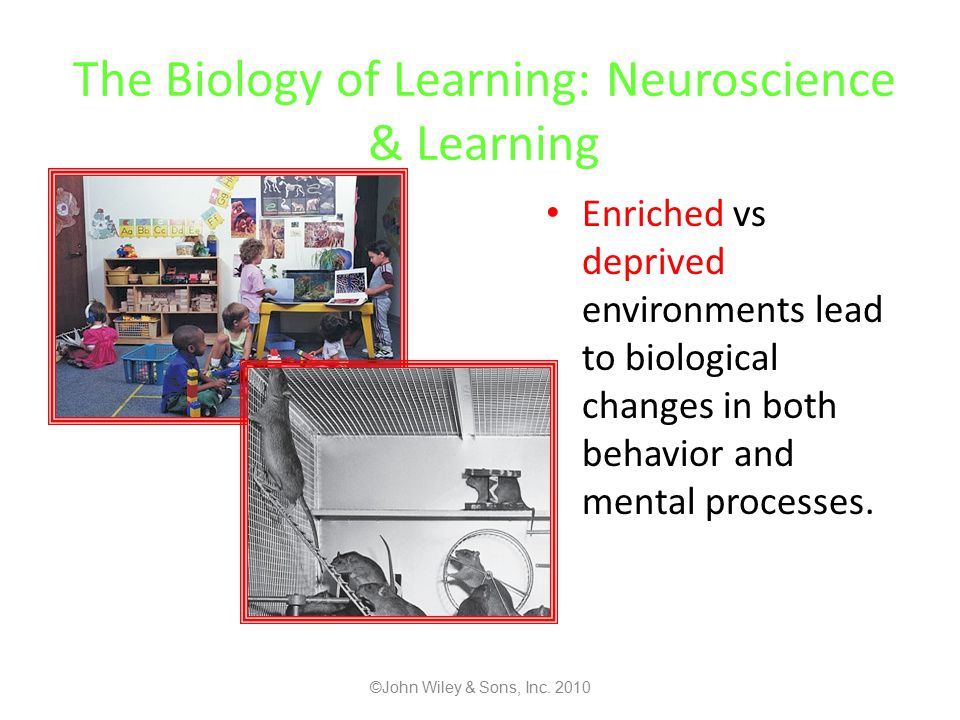 The Biology of Learning: Neuroscience & Learning Enriched vs deprived environments lead to biological changes in both behavior and mental processes.