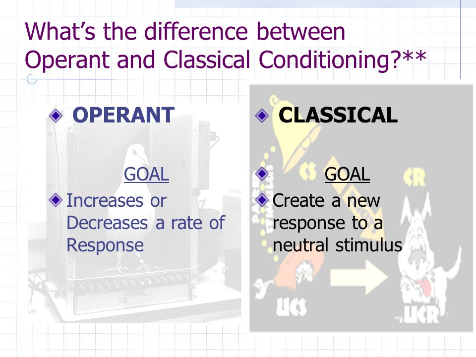 How does operant conditioning work .
