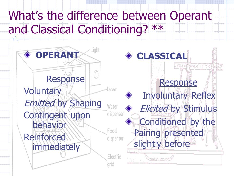 What's the difference between Operant and Classical Conditioning ** OPERANT GOAL Increases or Decreases a rate of Response CLASSICAL GOAL Create a new response to a neutral stimulus