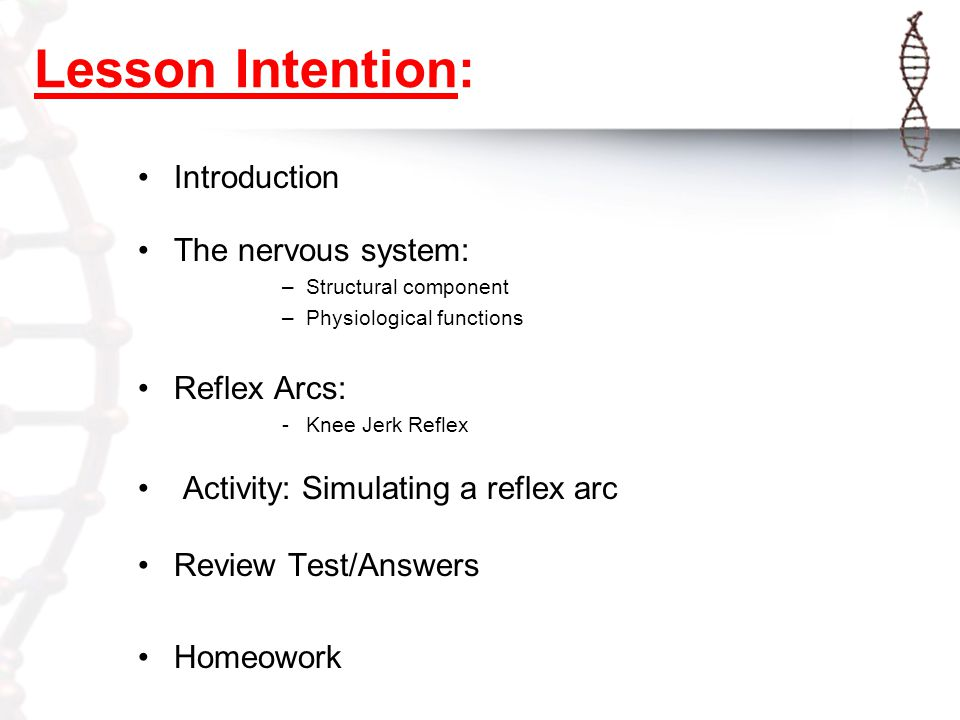 Review: The Nervous System Mr  Yassin Lesson Intention: Introduction
