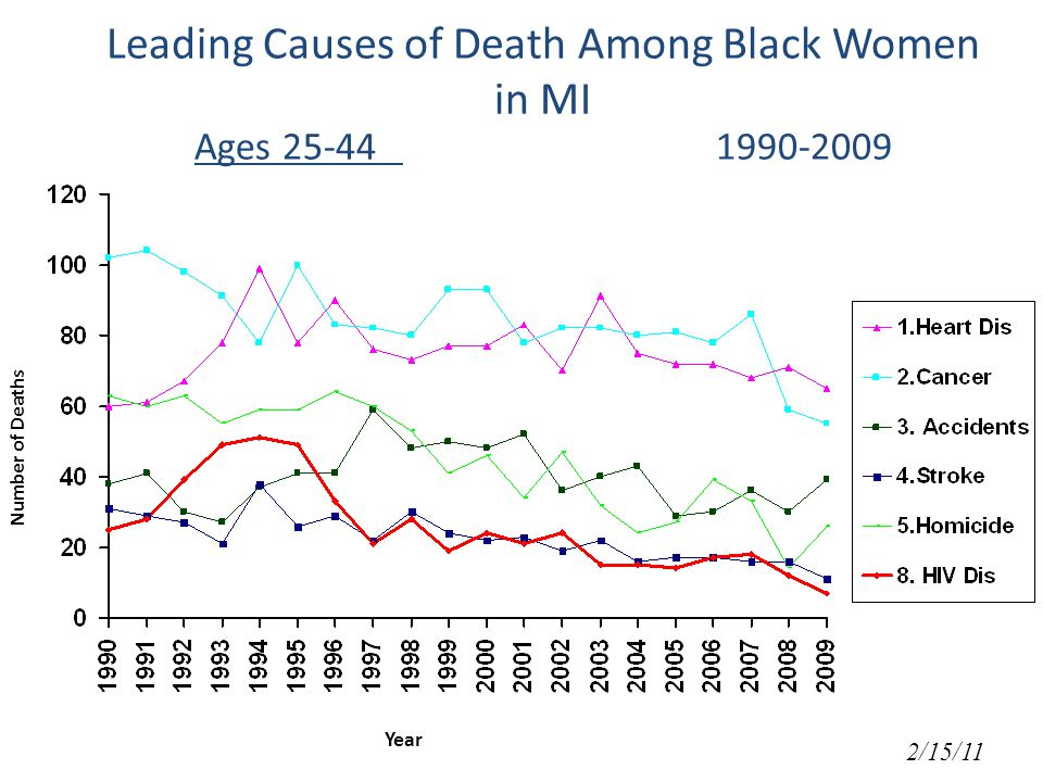 Leading Causes of Death Among Black Women in MI Ages Number of Deaths Year 2/15/11