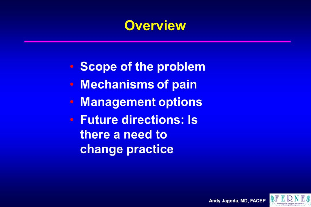 Clinical Decision Making in Emergency Pain Management Andy