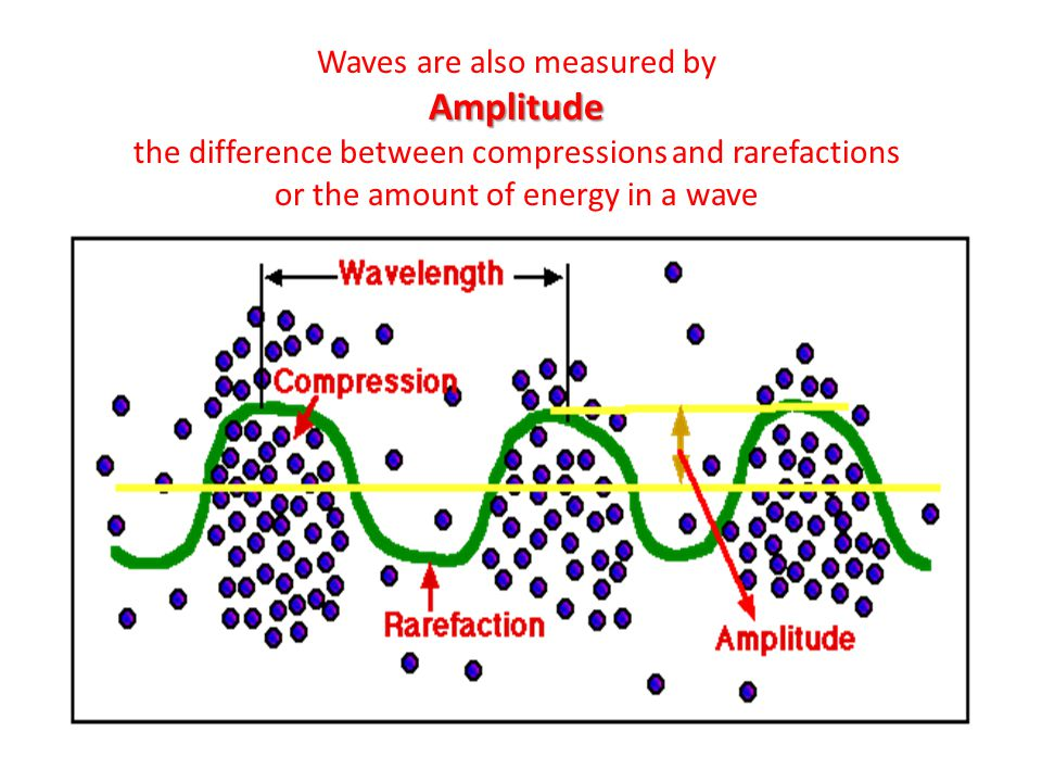 Waves are also measured byAmplitude the difference between compressions and rarefactions or the amount of energy in a wave