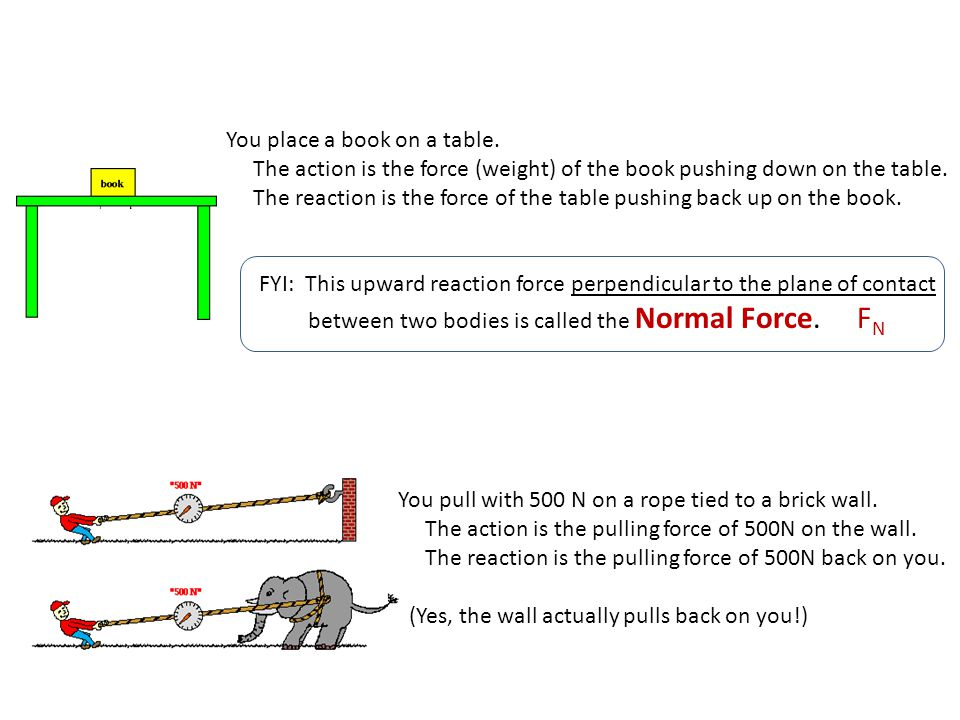Newton's Laws of Motion FORCES Forces are: Pushes or Pulls