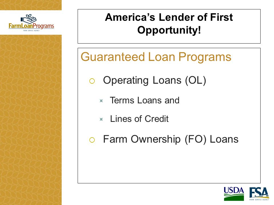 Guaranteed Loan Programs  Operating Loans (OL)  Terms Loans and  Lines of Credit  Farm Ownership (FO) Loans America's Lender of First Opportunity!