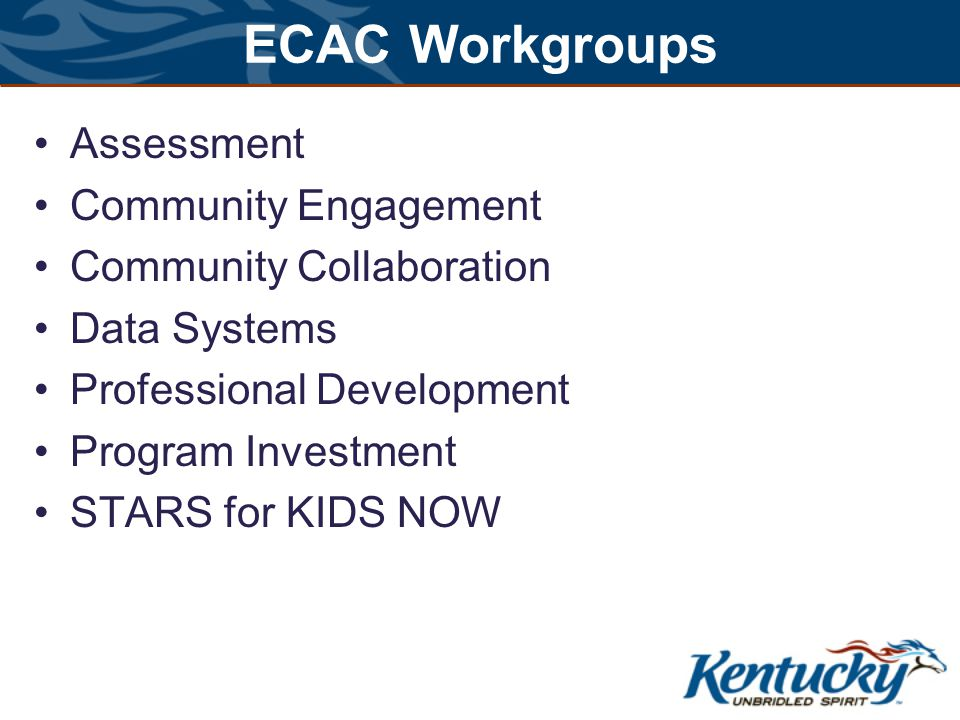 ECAC Workgroups Assessment Community Engagement Community Collaboration Data Systems Professional Development Program Investment STARS for KIDS NOW