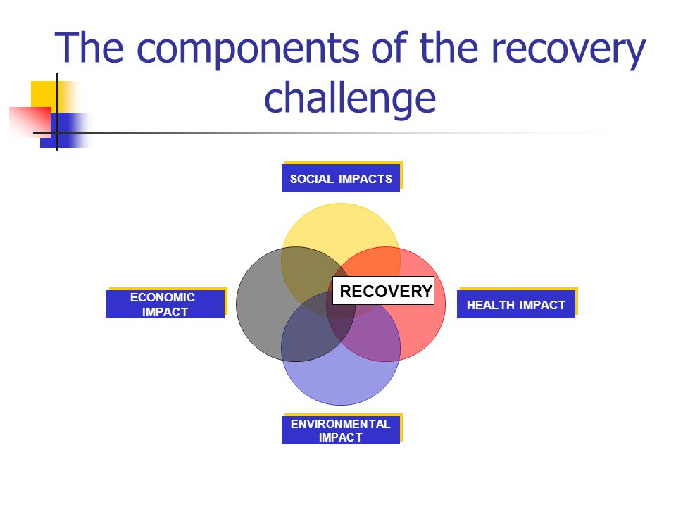 The components of the recovery challenge SOCIAL IMPACTS HEALTH IMPACT ENVIRONMENTAL IMPACT ECONOMIC IMPACT RECOVERY