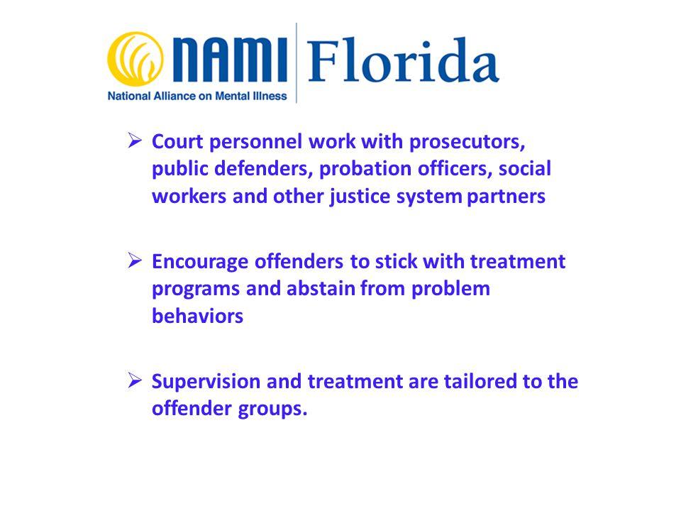 Utilizing Evidence Based Peer Programs As Jail Diversion In