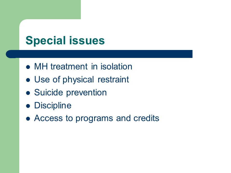 Special issues MH treatment in isolation Use of physical restraint Suicide prevention Discipline Access to programs and credits