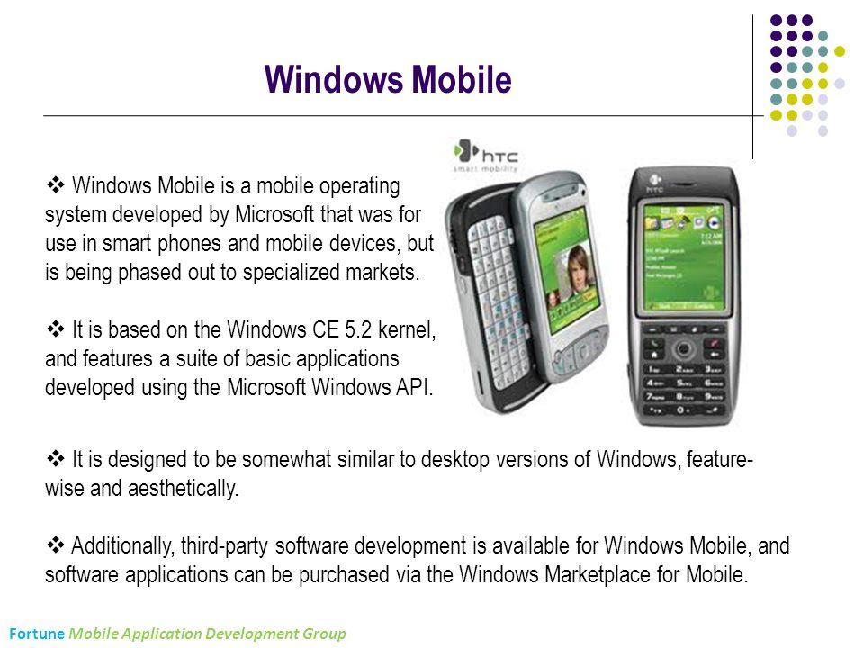 Fortune Infocomm Pvt  Ltd  Mobile Application Development
