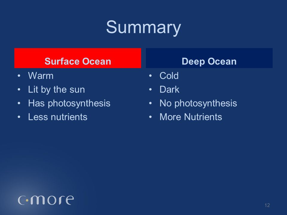 Surface Ocean Warm Lit by the sun Has photosynthesis Less nutrients Deep Ocean Cold Dark No photosynthesis More Nutrients 12 Summary