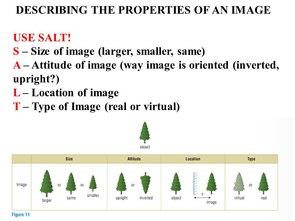 DESCRIBING THE PROPERTIES OF AN IMAGE USE SALT.