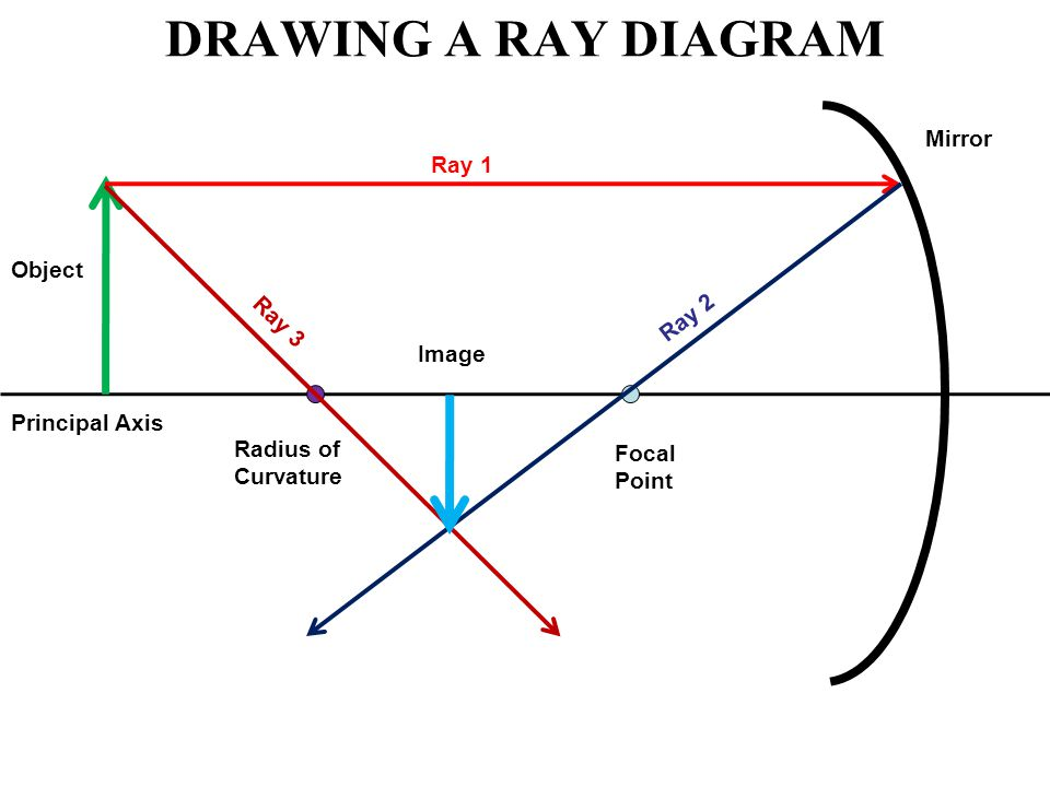 DRAWING A RAY DIAGRAM Principal Axis Focal Point Radius of Curvature Mirror Object Ray 1 Ray 2 Ray 3 Image