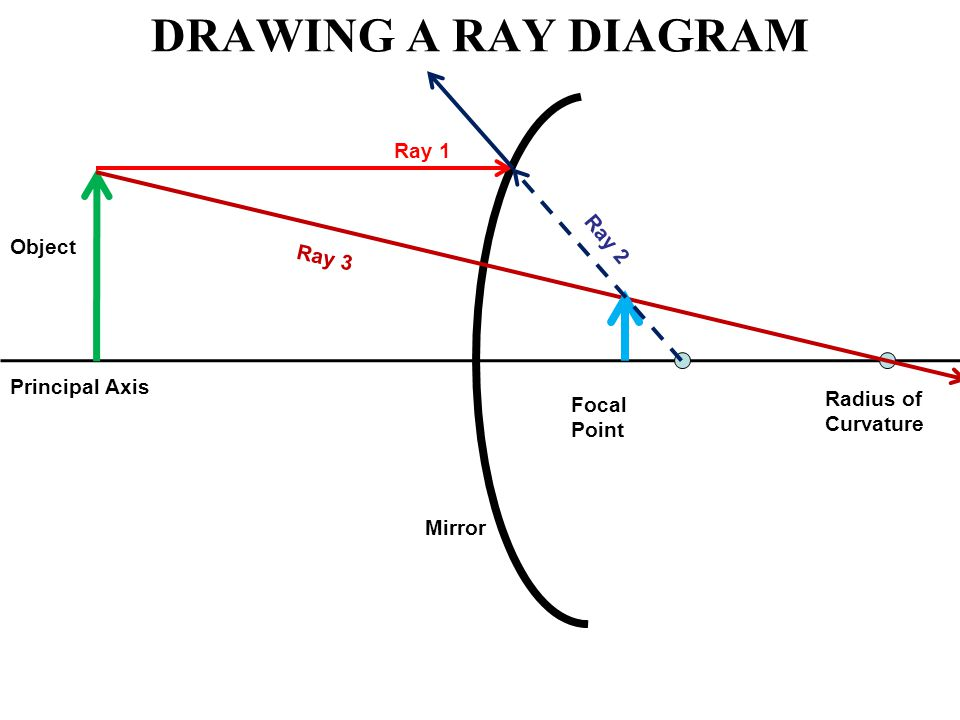 DRAWING A RAY DIAGRAM Principal Axis Focal Point Radius of Curvature Mirror Object Ray 1 Ray 2 Ray 3