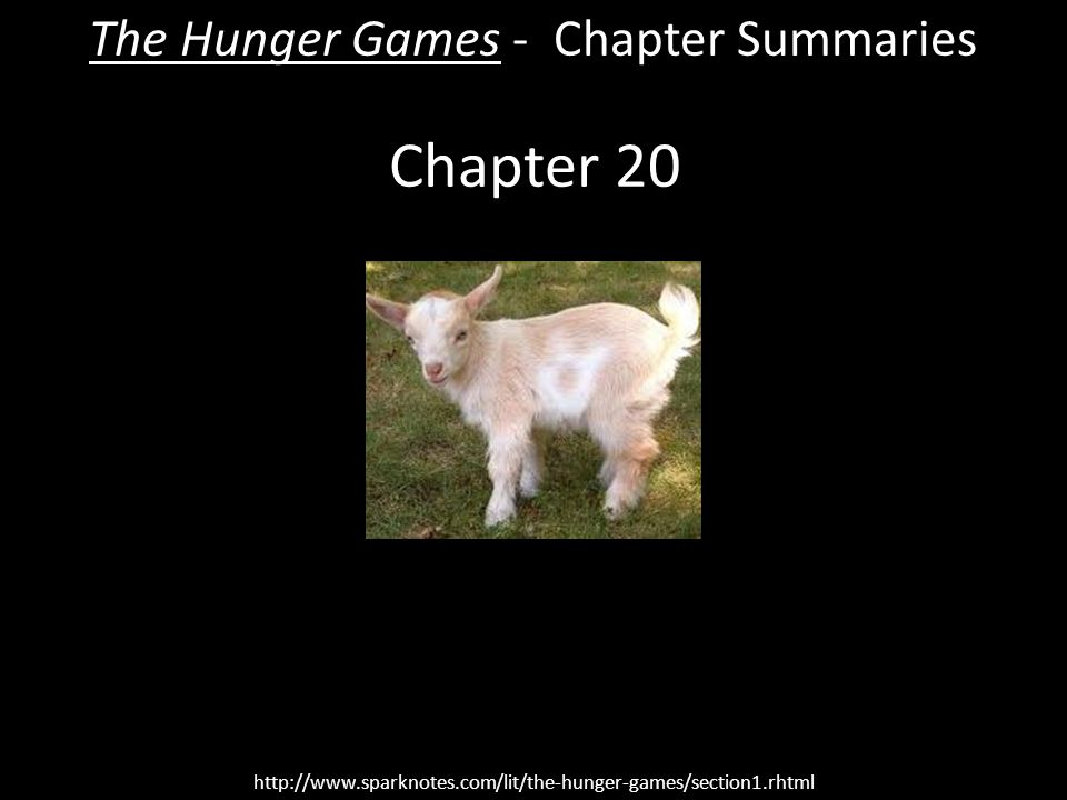 the hunger games chapter summary