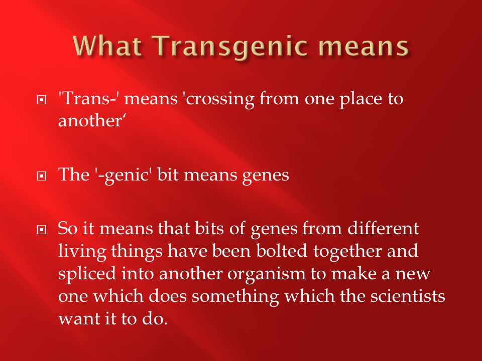  Trans- means crossing from one place to another'  The -genic bit means genes  So it means that bits of genes from different living things have been bolted together and spliced into another organism to make a new one which does something which the scientists want it to do.