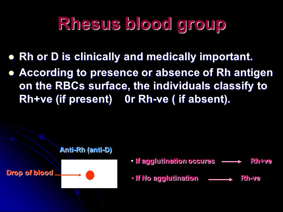 Rhesus blood group Rh or D is clinically and medically important.