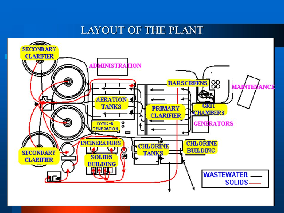 LAYOUT OF THE PLANT