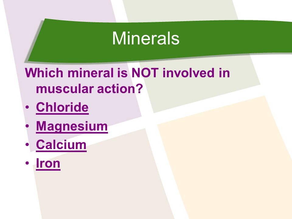 Minerals Which mineral is NOT involved in muscular action Chloride Magnesium Calcium Iron
